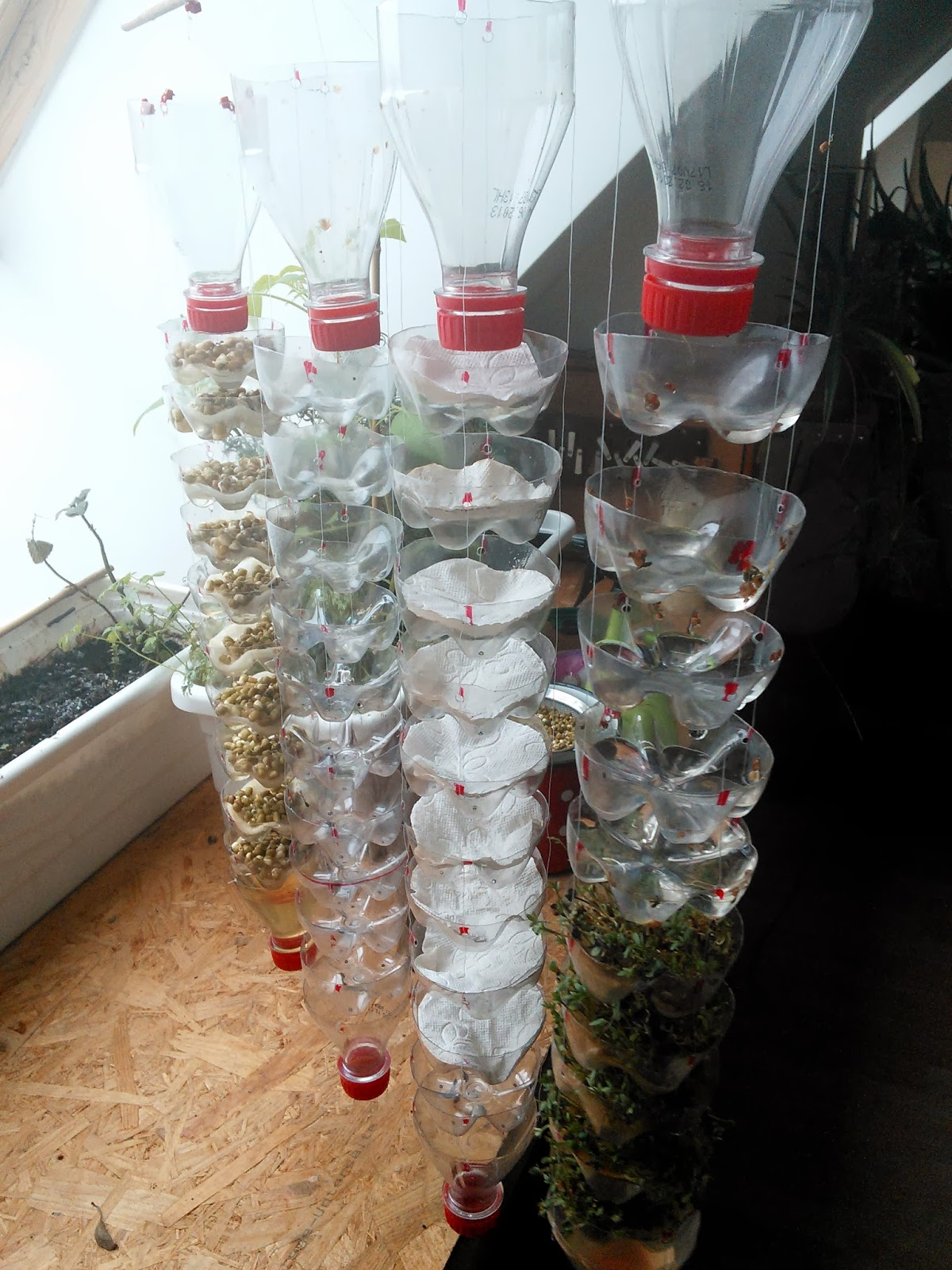 Windrad Basteln Aus Pet Flaschen Diy Pet Flaschen Interesting