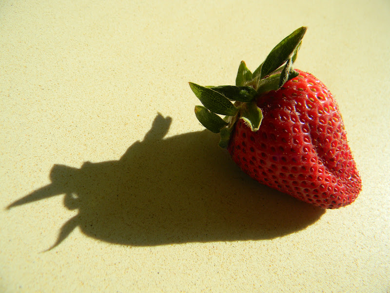 strawberry moon - 800×600