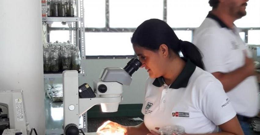 CONCYTEC podrá crear cuerpo de investigadores en Ciencia, Tecnología e Innovación - www.concytec.gob.pe