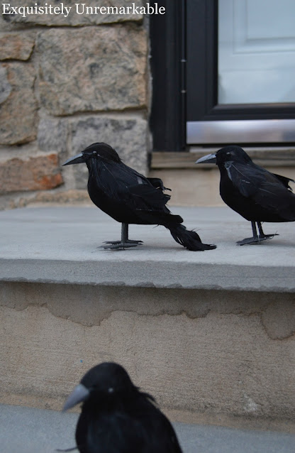 Faux Black Crows on the stoop close up