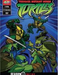 Teenage Mutant Ninja Turtles Series | Bmovies