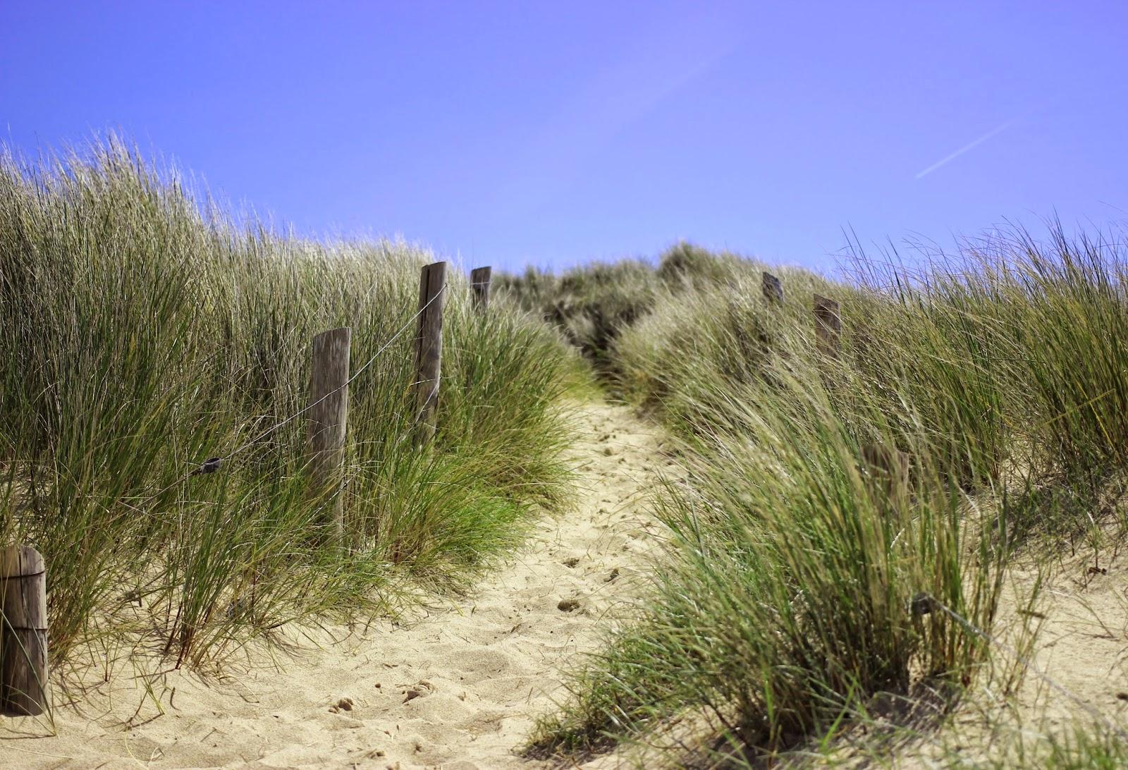 Chemin d'accès à la plage des chevrets - Voyage à Saint Malo - Bretagne - France