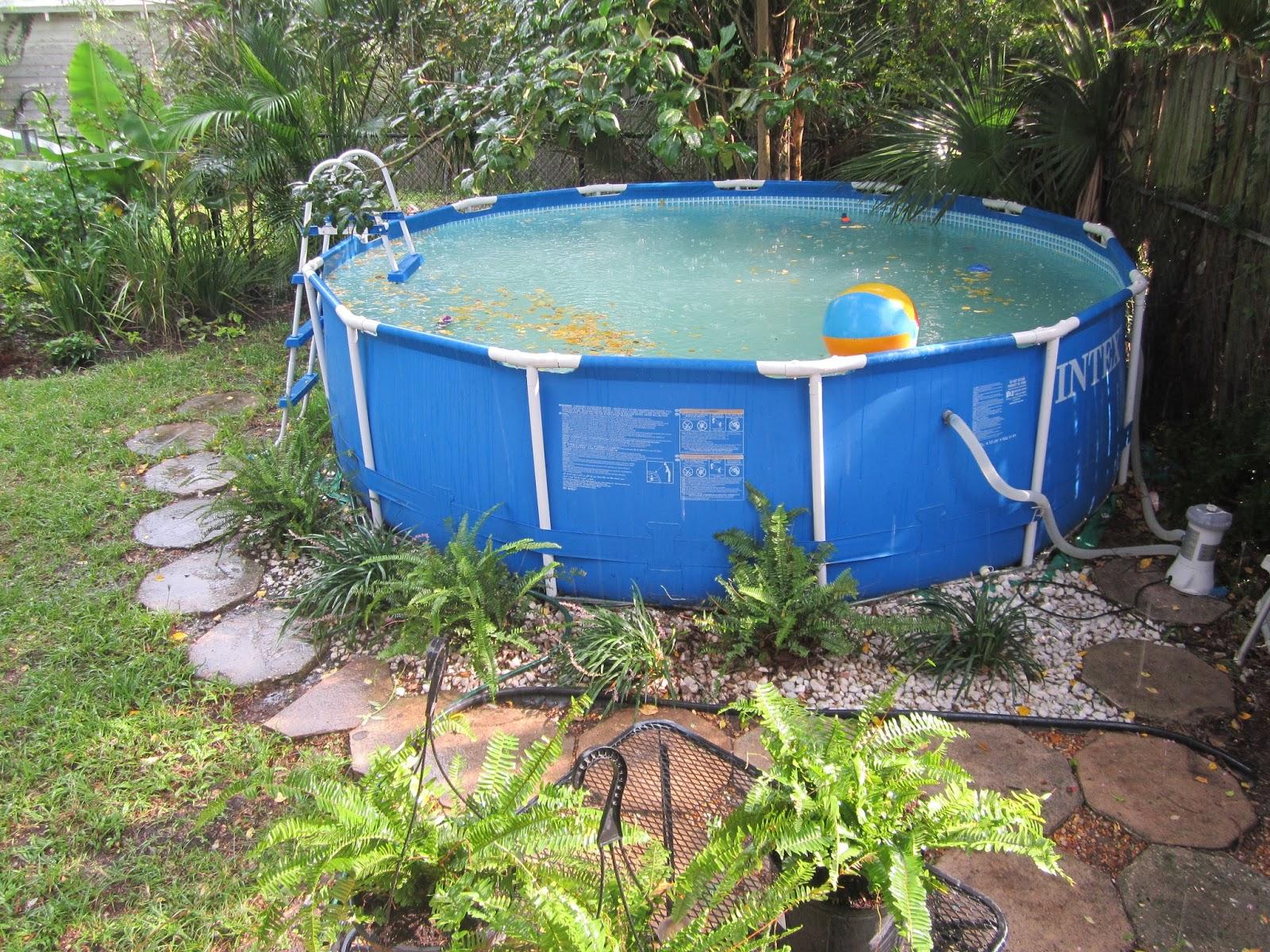 Little old house backyardigans - Backyard above ground pool ideas ...