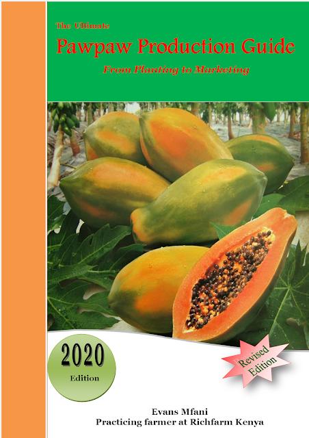 papaya farming guide kenya pdf