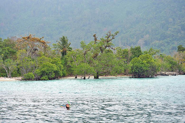 Pulau Sebuku dan Keindahan Bawah Lautnya