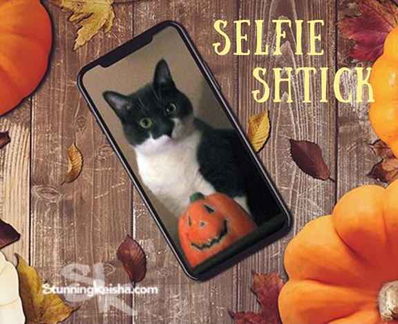 Selfie Shtick