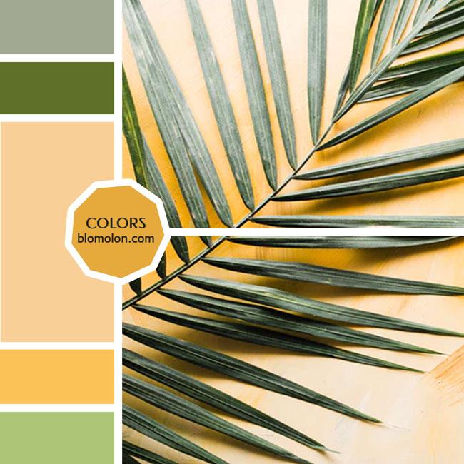 variedad_en_color_moodboard_24