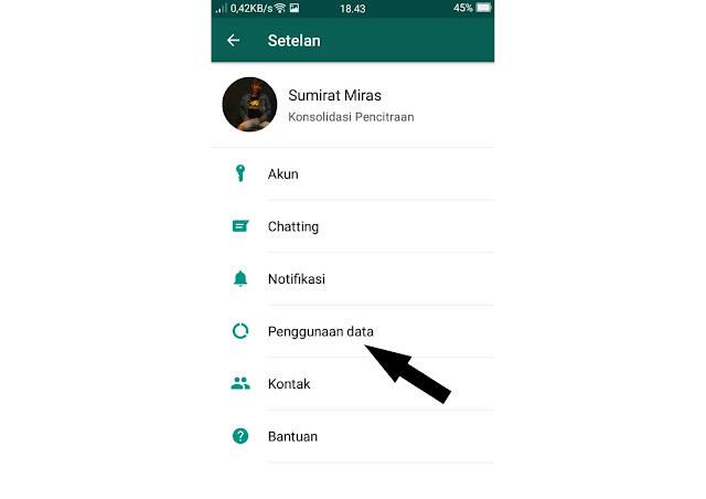 menonaktifkan download otomatis whatsapp - 3