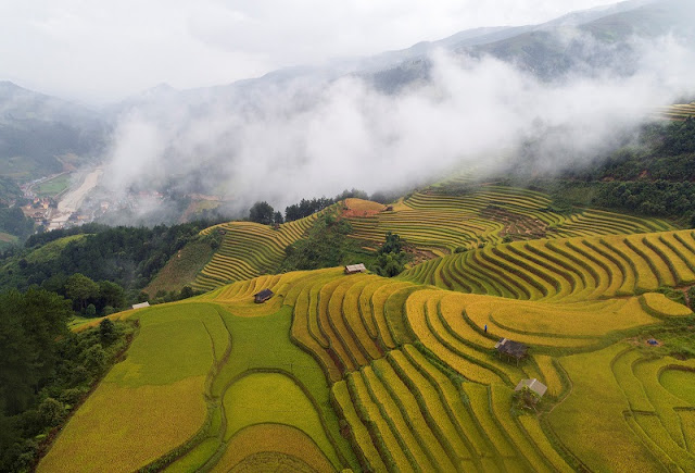 Now is the best time to see terraced rice fields in Mu Cang Chai, Vietnam 2