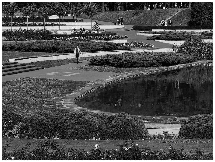 Rosarium w Parku Cytadela w Poznaniu