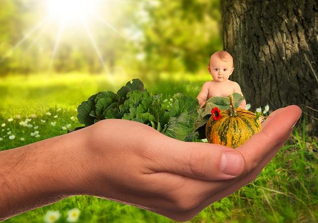 5 formas de reduzir exposição à toxinas em casa