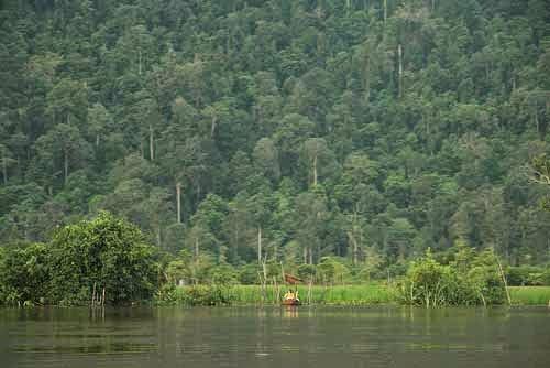 Wisata Taman Hutan Jaya Giri Lembang