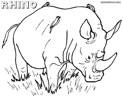 R For Rhino Coloring Pages Picture