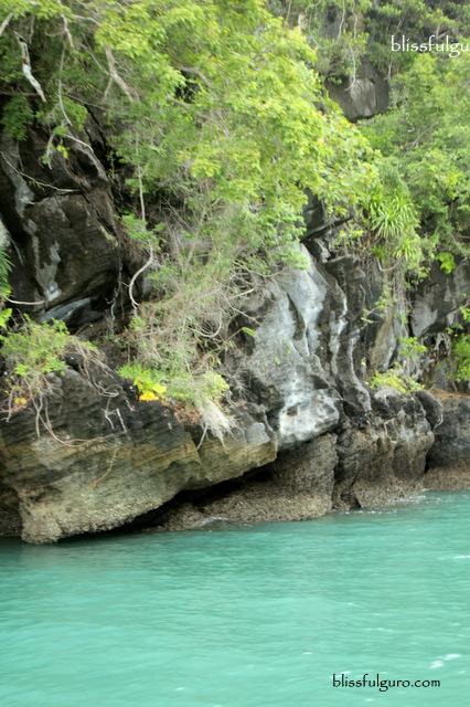 Langkawi Geoforest Park