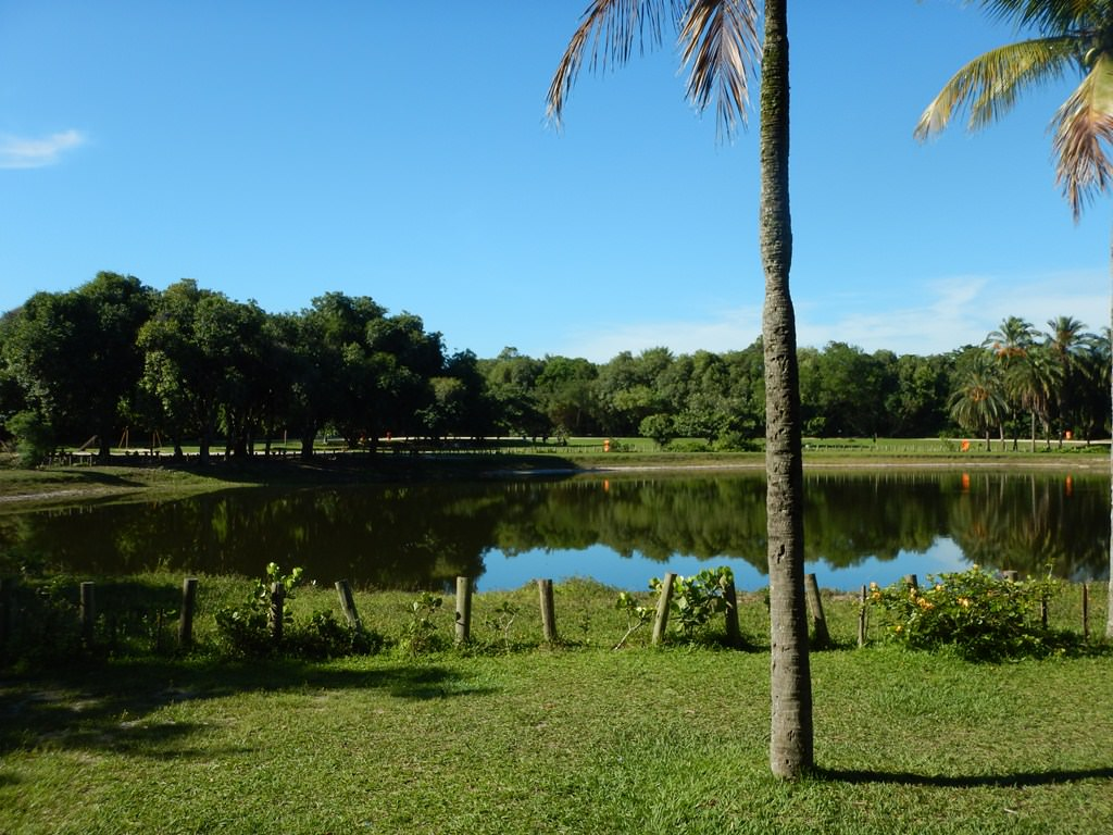 Lago Central no Bosque da Barra