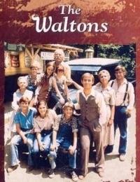 The Waltons 8 | Bmovies