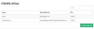 memasukkan dns google pada c panel domain (DNS)