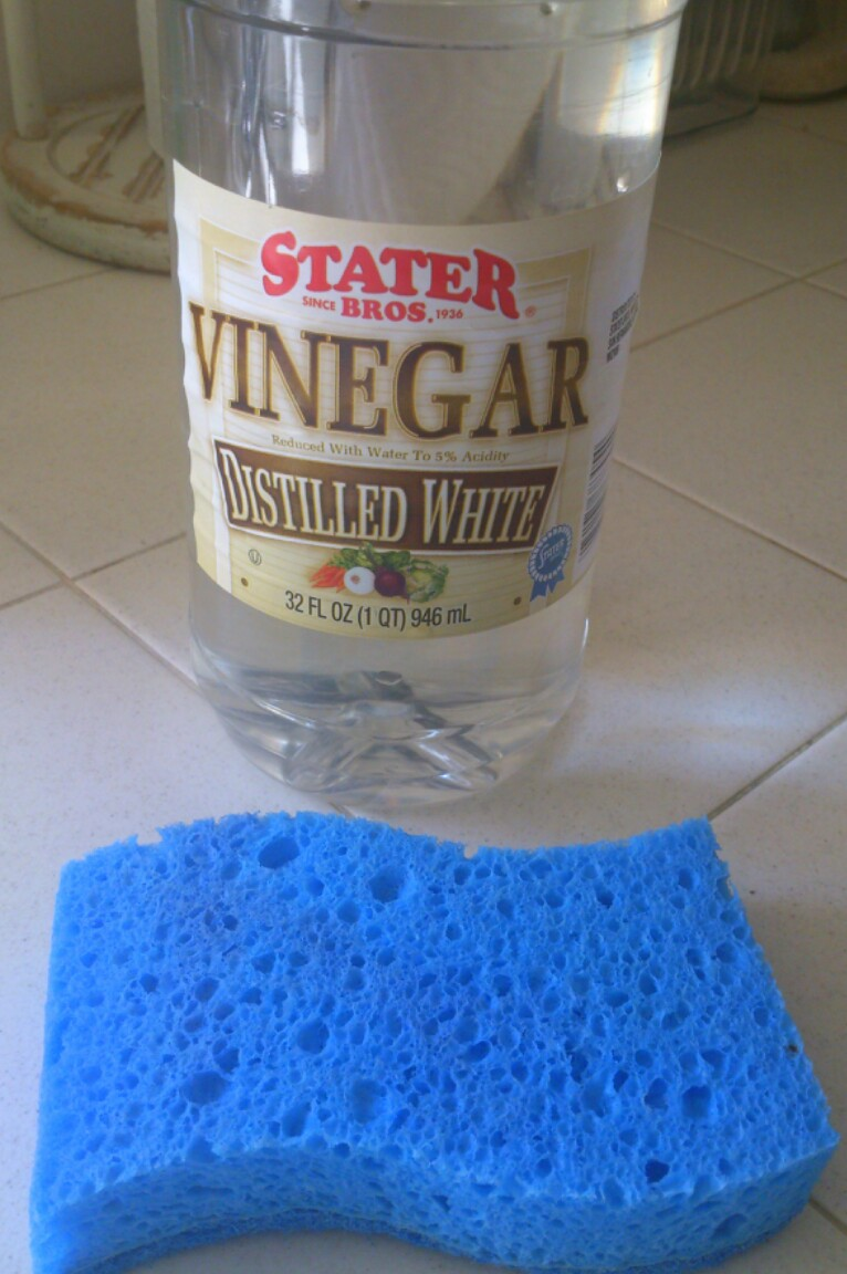 Sunny Simple Life: How to Remove Hard Water Stains from Glass and ...
