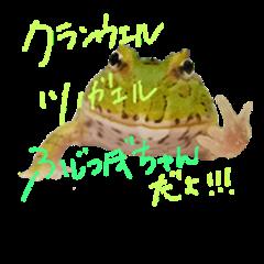 Fujitubochan!
