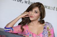 Angela Krislinzki Rogue Movie Fame Telugu Actress in Saree Backless Choli 014.JPG