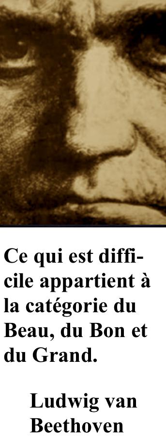 https://fr.wikipedia.org/wiki/Ludwig_van_Beethoven