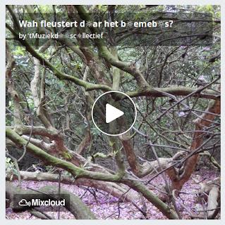 https://www.mixcloud.com/straatsalaat/wah-fleustert-dar-het-bemebs/