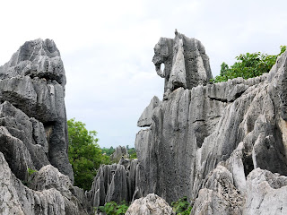 Shilin - The Stone Forest 005