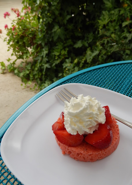 Strawberry%2BProtein%2BCake%2BRecipe%2BGarden Weight Loss Recipes Post Weight Loss Surgery Menus: A day in my pouch