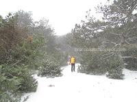 snijeg Gažul Vidova gora slike otok Brač Online