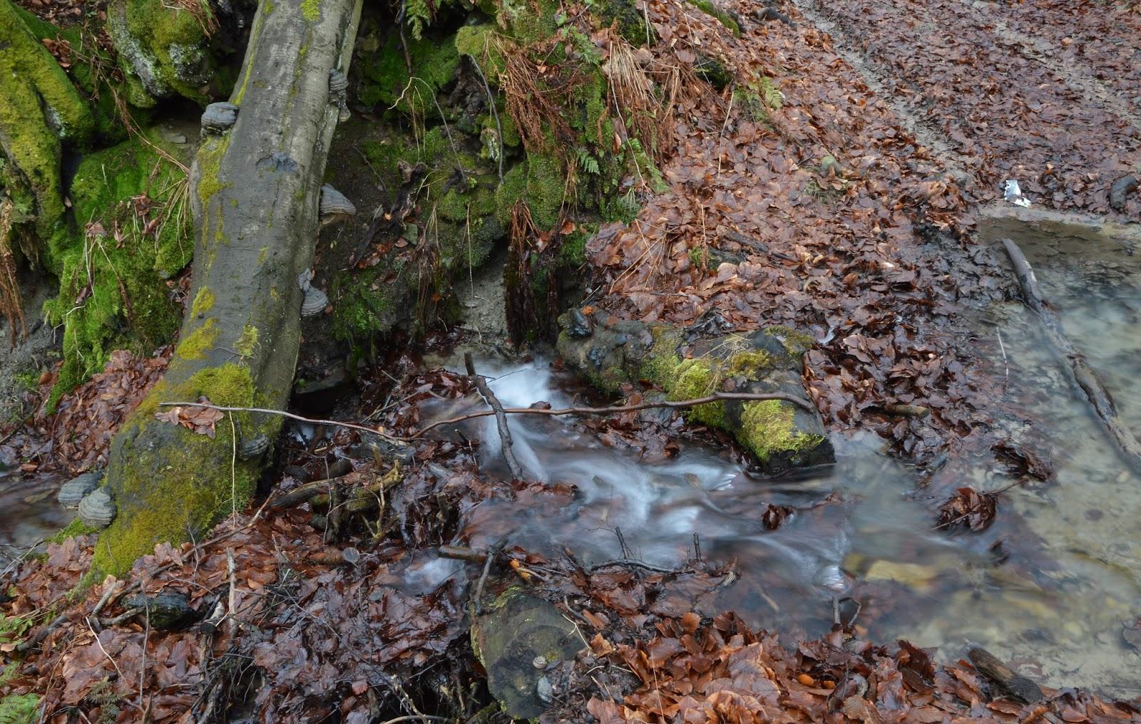 Potok, Beskid Niski