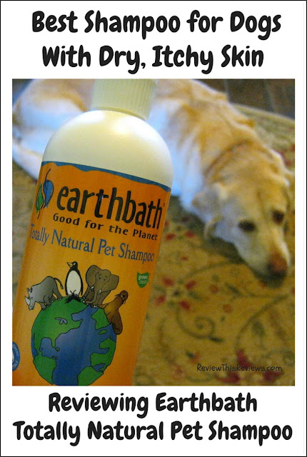 What do I believe is the best shampoo for dogs with dry, itchy skin? Earthbath Totally Natural Pet Shampoo with oatmeal and aloe. Here's my review.
