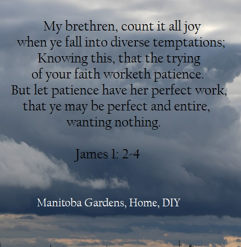 My brethren, count it all joy