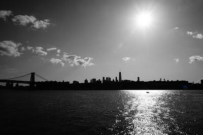 Le Chameau Bleu - Promenade à New York  et ses ponts