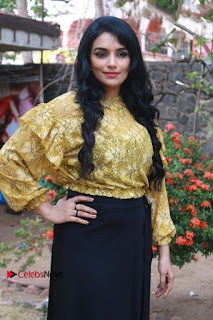 South Indian Actress Shweta Menon Stills at Inayathalam Audio Launch Stills  0010.jpg