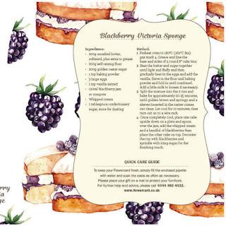 food illustrator, food illustration, watercolour food, watercolor illustrator, food art, food artist, illustration,