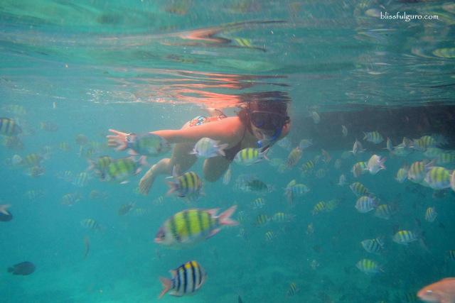 Snorkeling Koh Phi Phi Thailand