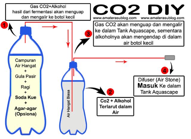 Cara Membuat Injeksi Co2 DIY untuk Aquascape