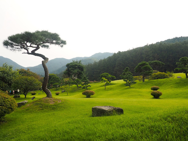 Trees and lawn in the Garden of Morning Calm, Gyeonggi-do, South Korea