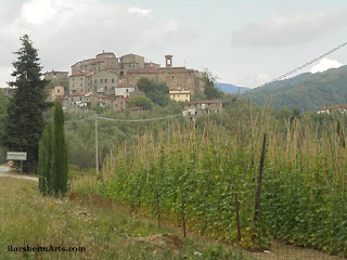 il paese in Valleriana Tuscany Italy with growing beans of Sorana