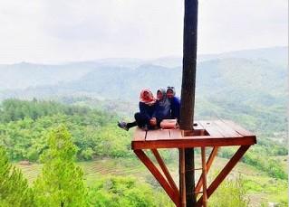 http://www.teluklove.com/2016/11/pesona-keindahan-wisata-bukit-pentulu.html