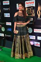 Ritika Singh in a Ethnic Deep Neck Dark Green Choli Ghagra at IIFA Utsavam Awards March 2017 ~ 017.JPG