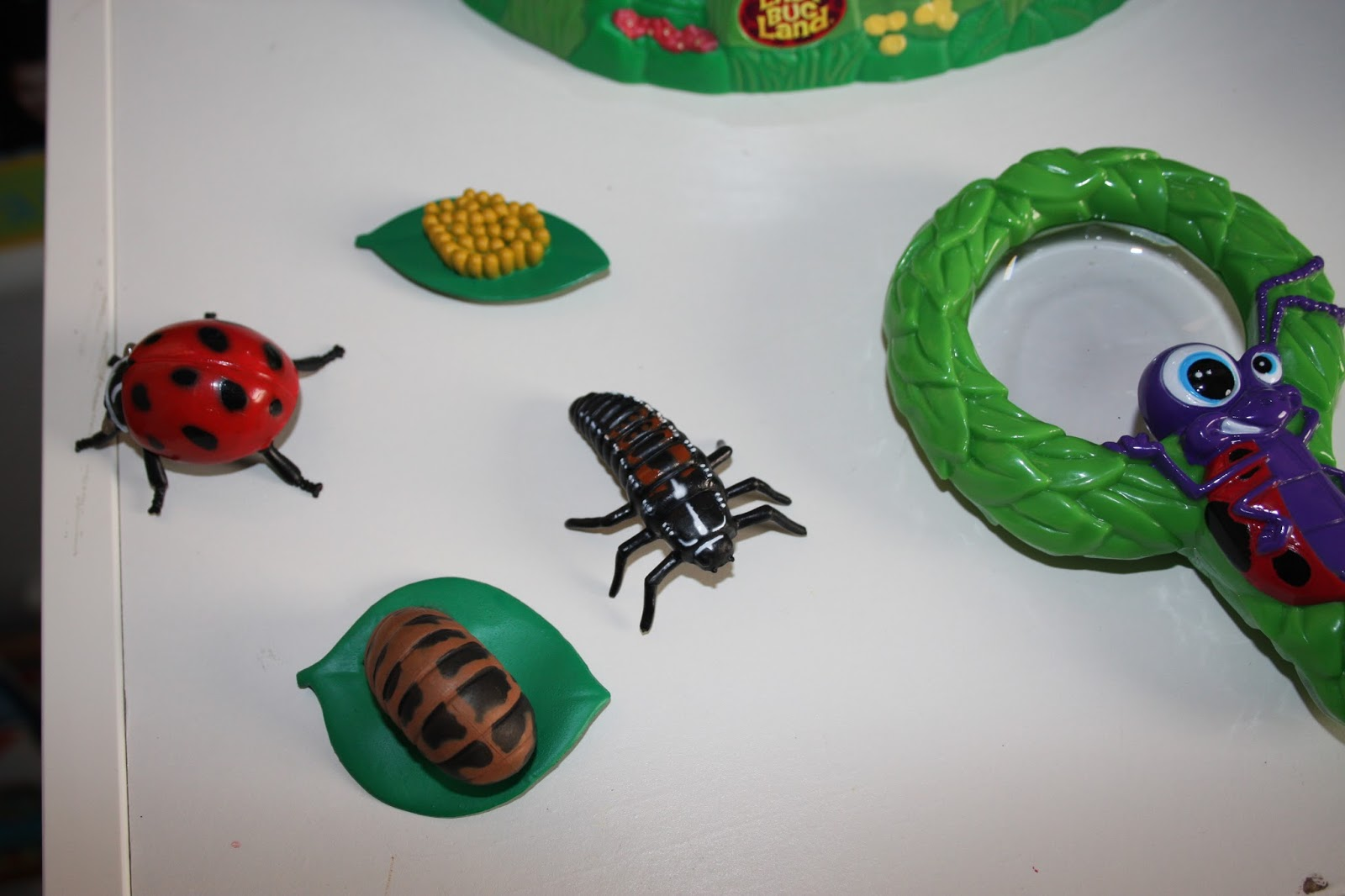 Mrs Amador S Home Daycare All Ready For Ladybug Life