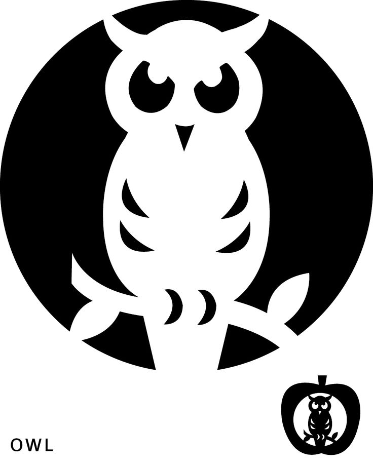 Easy and cute owl pumpkin carving templates ideas 2017 happy easy and cute owl pumpkin carving stencils templates ideas 2017 maxwellsz