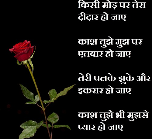 love shayari in hindi for girlfriend with red rose flowers
