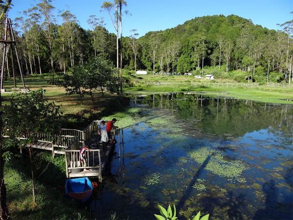 Tempat refreshing dan outbond yang menarik di Bumi Perkemahan Ranca Upas Ciwidey Bandung