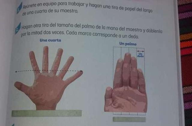 Mano con seis dedos en libro de matemáticas se hace viral