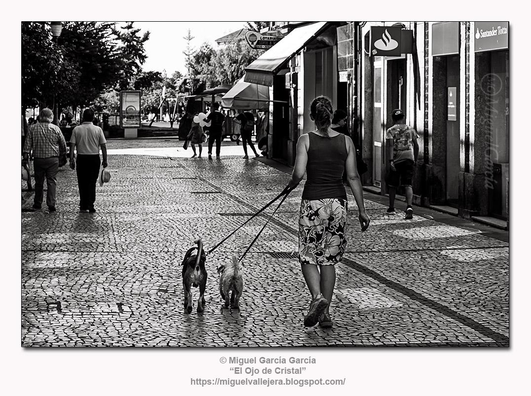 Braga (Portugal). Paseo Canino.
