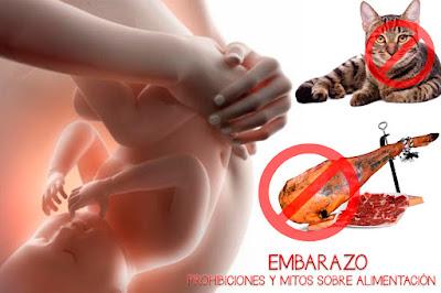 alimentos prohibidos mitos alimentación embarazo blog mimuselina
