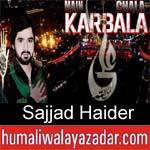 https://www.humaliwalyazadar.com/2018/09/sajjad-haider-nohay-2019.html