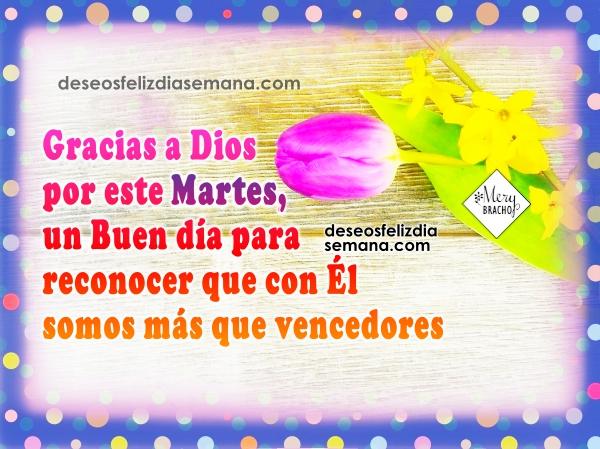 Bonitas frases de feliz martes, lindos mensajes cristianos del martes por Mery Bracho con imágenes para facebook.